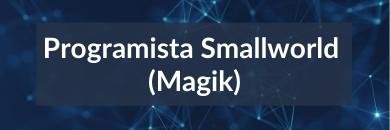 Programista Smallworld (Magik)